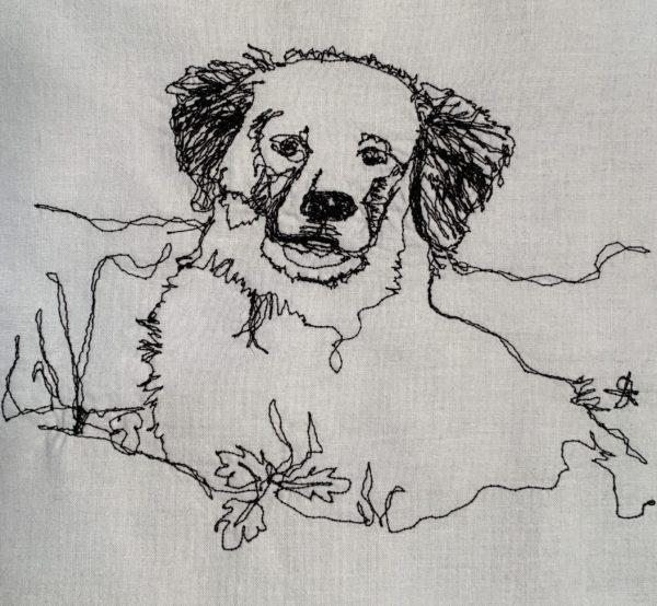 Doodle with Dark Ears