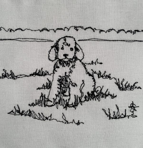 Poodle Puppy in Field