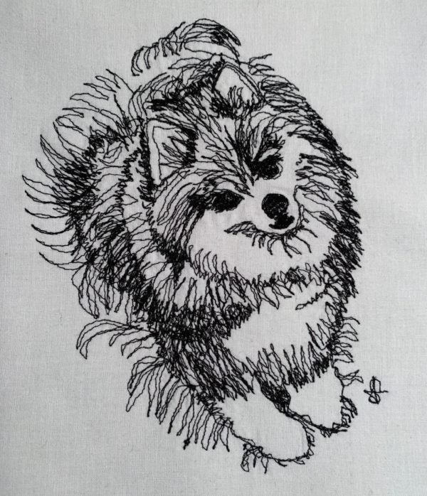 Pomeranian Hope