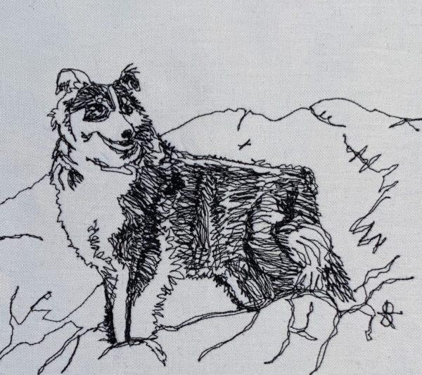 Sheepdog in Mountains